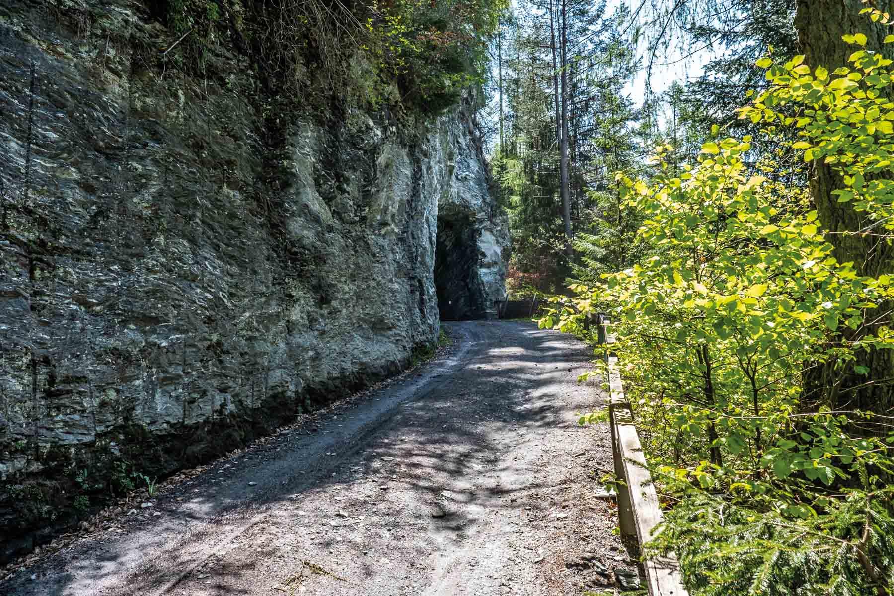 Revision Gesetz für das Befahren von Waldstrassen